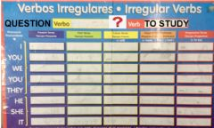 Interactive worksheet Verb to study question