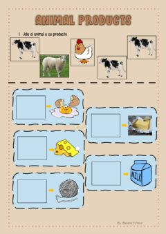 Interactive worksheet Animal Products
