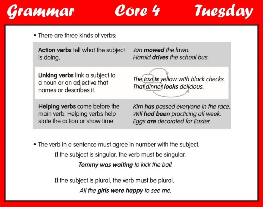 Grammar - Types Of Verbs Worksheet