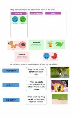 Interactive worksheet Mutualism, predation and parasitism