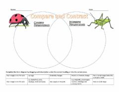 Interactive worksheet Insect Life Cycle