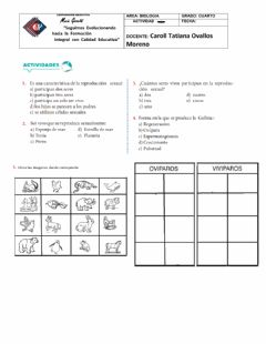 Interactive worksheet Desarrollo embrionario