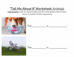 Interactive worksheet -Tell Me About It- Worksheet Animals