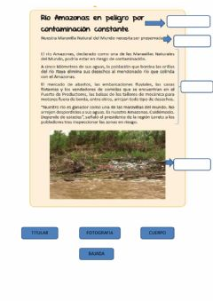 Interactive worksheet Estructura de la noticia