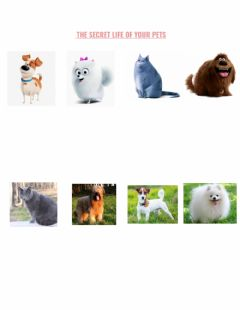 Interactive worksheet The Secret Life of My Pets - match