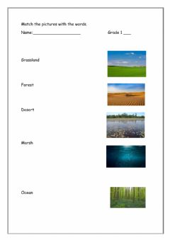 Interactive worksheet Different Types of Environment