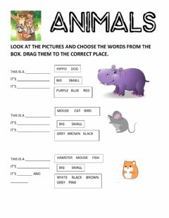 Ficha interactiva Animals - description