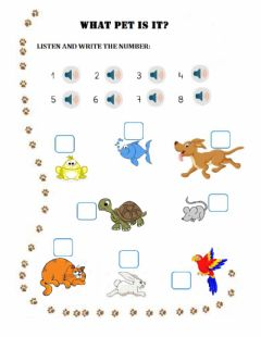 Interactive worksheet Pets - What pet is it?