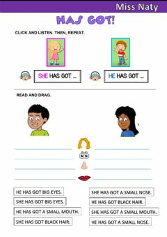 Interactive worksheet She has got - He has got
