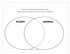 Interactive worksheet Compare and contrast animal and plant