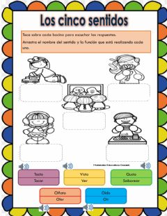 Interactive worksheet Los cinco sentidos