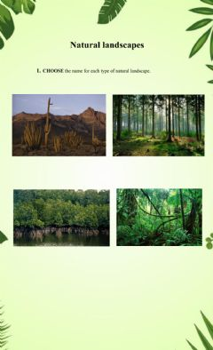 Interactive worksheet Natural landscapes 2