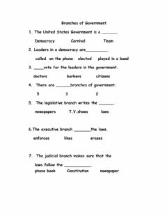 Interactive worksheet Three Branches of Government