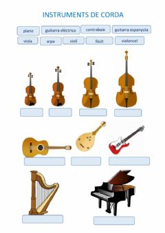 Interactive worksheet Instruments de corda