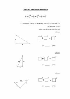 Interactive worksheet משפט פיתגורס כיתה י