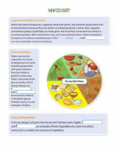 Interactive worksheet Why do i eat?