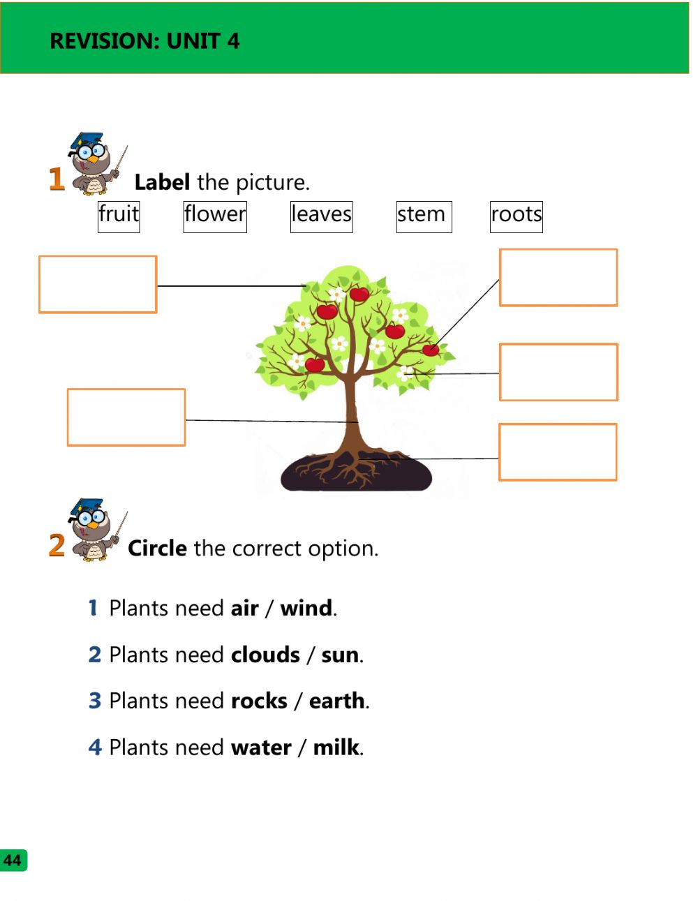 What plants need and parts of the plant worksheet