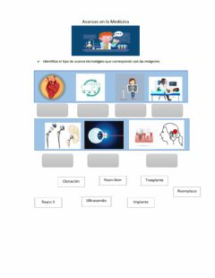 Interactive worksheet Avances en la Medicina