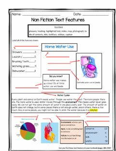 Ficha interactiva Text Features