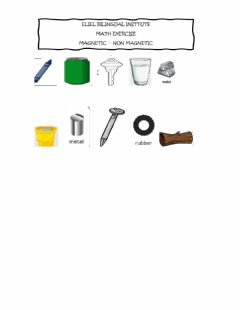 Interactive worksheet Magnetic or non magnetic