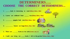 Ficha interactiva Choose the  correct   determiners...