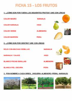 Interactive worksheet Arboles frutales