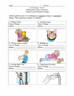 Interactive worksheet Temporary and Permanent Changes