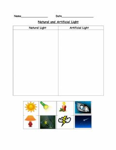 Interactive worksheet Natural and Artificial Light