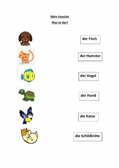 Interactive worksheet Mein Haustier