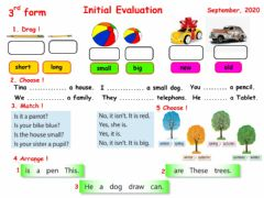Interactive worksheet Initial Evaluation