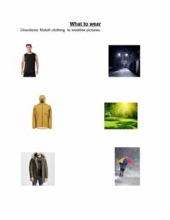 Ficha interactiva What to wear