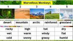 Interactive worksheet Science w1 p2 t2