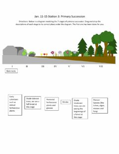 Interactive worksheet Primary Succession