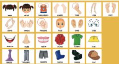 Interactive worksheet Vocabulary body - clothes