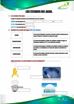 Interactive worksheet Los estados del agua