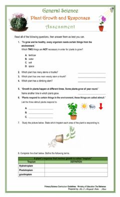 Interactive worksheet Plant Growth and Responses