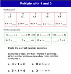 Interactive worksheet Multiply by o and 1