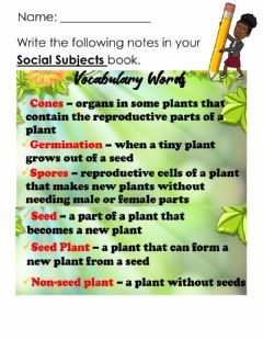 Interactive worksheet Seed and Non-Seed Plants