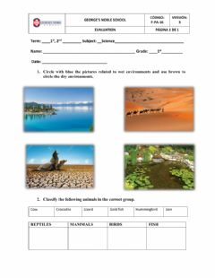 Interactive worksheet Science test