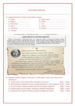 Interactive worksheet Einstein'ın Mektubu