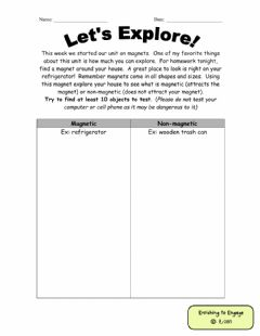 Interactive worksheet Magnetism