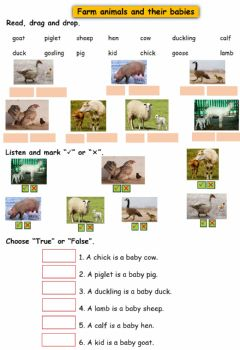 Interactive worksheet Farm animals and their babies