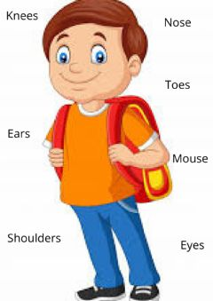 Interactive worksheet English body parts for kids
