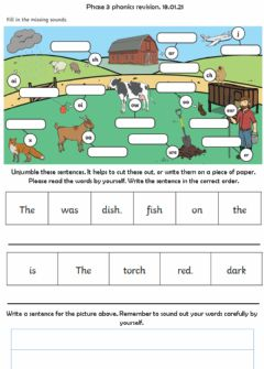 Interactive worksheet Phase 3 revision