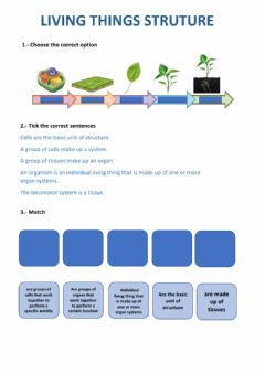 Interactive worksheet Levels or organization of living things