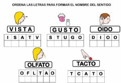 Interactive worksheet Sentidos