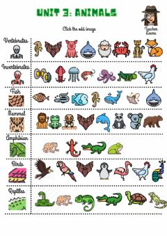 Ficha interactiva Unit 3: Animals