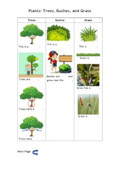 Interactive worksheet Plants: Trees, bushes, and grass