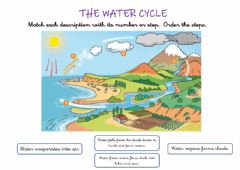 Ficha interactiva The water cycle