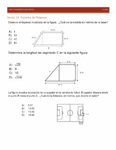 Interactive worksheet Domina 12